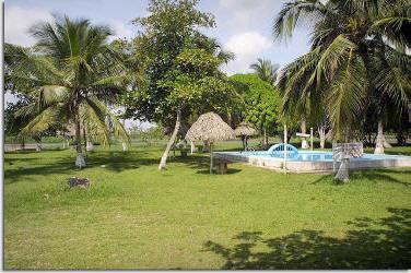 Hotel camping coco loco nautla veracruz mexico for Casitas veracruz