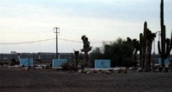 Benito camp1