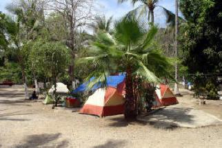 Delia S Trailer Park Rincon On The Road In Mexico