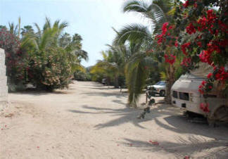 El Litro Small Campground Todos Santos Baja California Sur