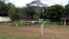 JardinesCullican2