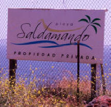 PlayaSaldamando