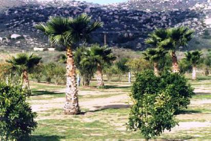 RanchoSordoMudo1