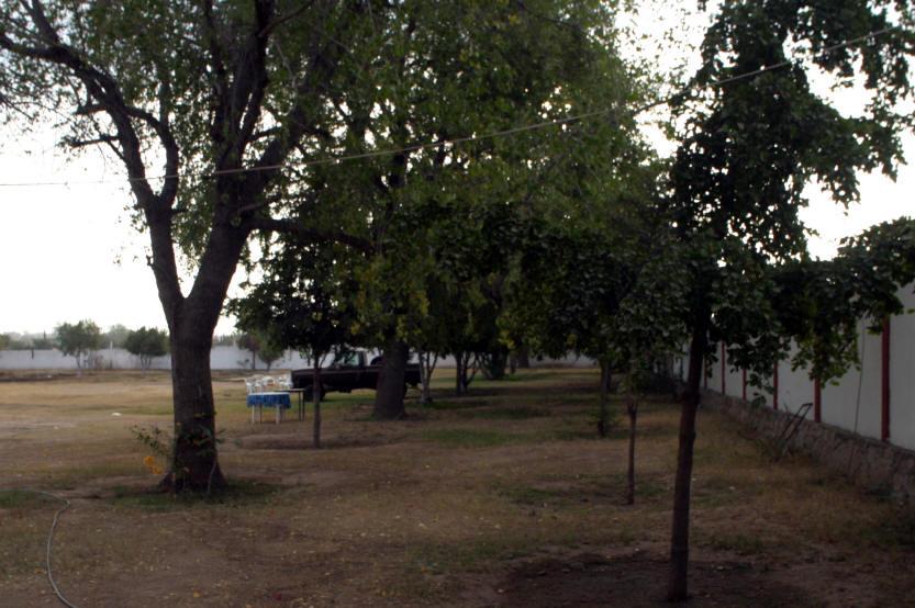 hotelbougainvillepark2