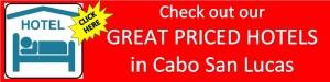 Cabo San Lucas Hotels