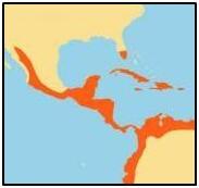 croc mexican map