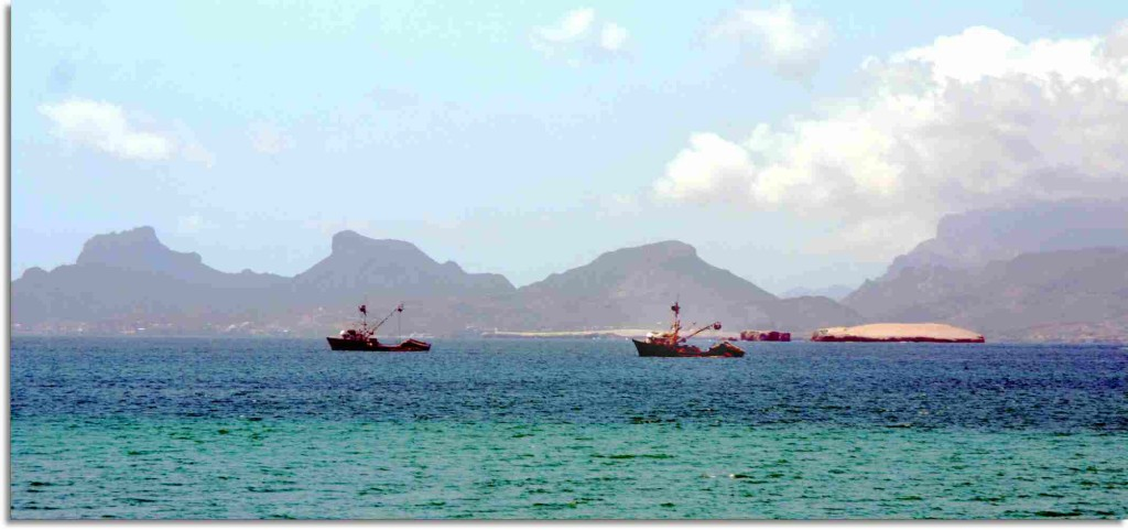 Guaymas Fish Boats head out to sea