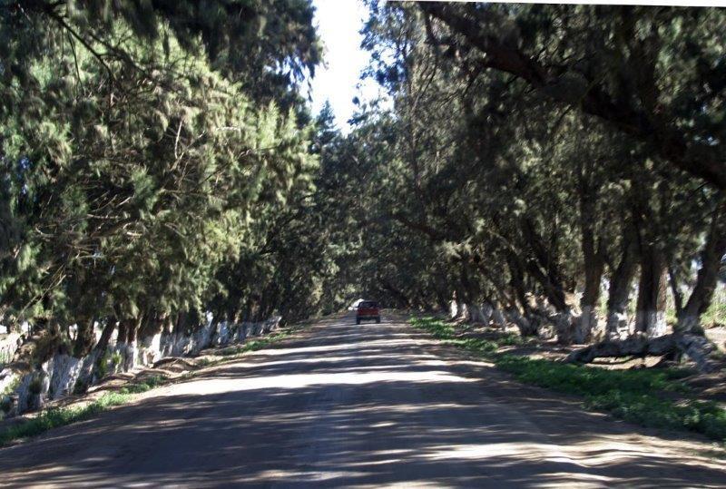 road to Cielito Lindo Rv